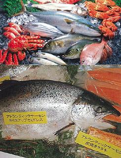 for Fresh fish company